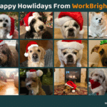 Happy Holidays: Meet The Pets Of WorkBright